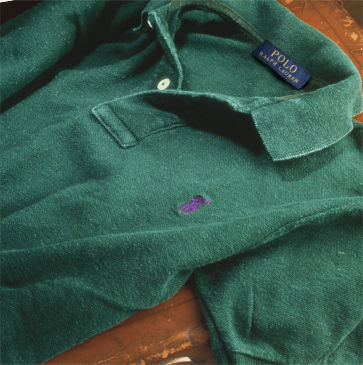 Green Polo shirt with a purple signature embroidered pony
