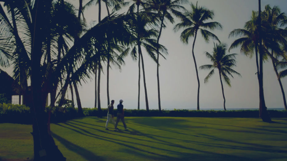 Video of professional golfers on course dotted with palm trees